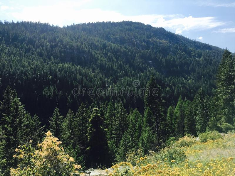 Παράδεισος βουνοπλαγιών στοκ εικόνες