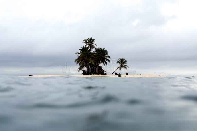 παράδεισος τροπικός στοκ εικόνες με δικαίωμα ελεύθερης χρήσης