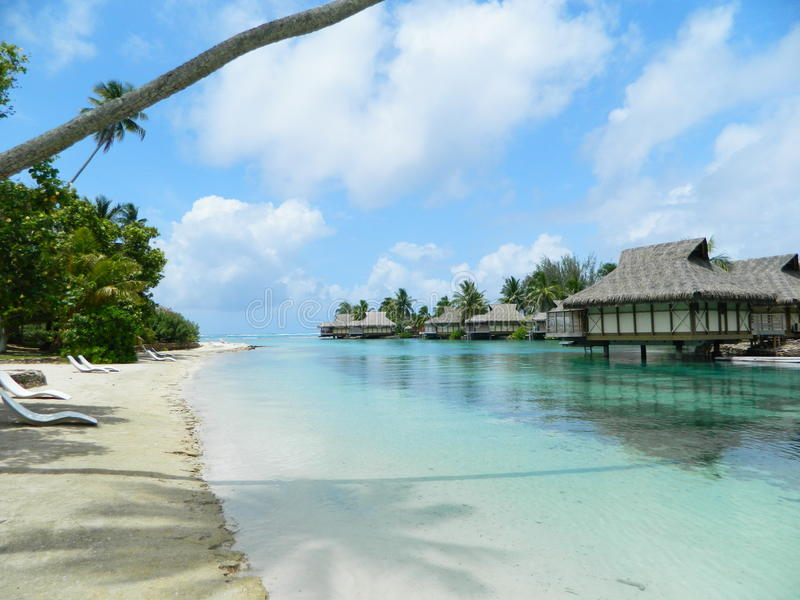 Παράδεισος Tahitian στοκ εικόνα