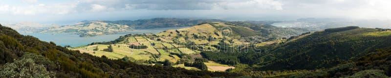 Παράλια Ειρηνικού και χερσόνησος Otago, Νέα Ζηλανδία στοκ φωτογραφία
