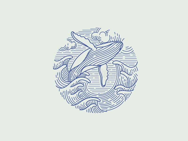 Παραβιάζοντας humpback λογότυπο φαλαινών ελεύθερη απεικόνιση δικαιώματος
