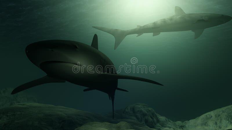 Παραγμένοι υπολογιστής καρχαρίες που κολυμπούν κοντά στο ωκεανό απεικόνιση αποθεμάτων