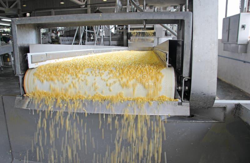 Παραγωγή καλαμποκιού στοκ φωτογραφία με δικαίωμα ελεύθερης χρήσης