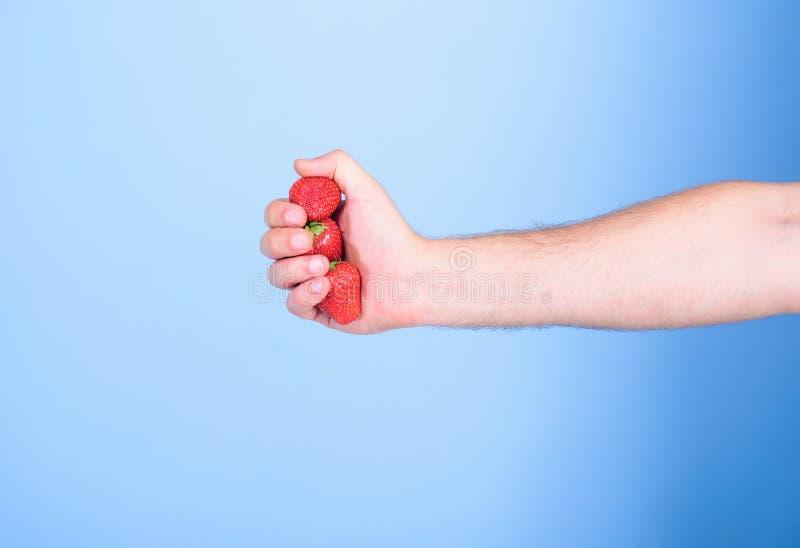 Παραγωγή του φρέσκου χυμού φραουλών Συμπίεση του φρέσκου χυμού φραουλών Το χέρι κρατά το κόκκινο γλυκό ώριμο μπλε υπόβαθρο μούρων στοκ εικόνα