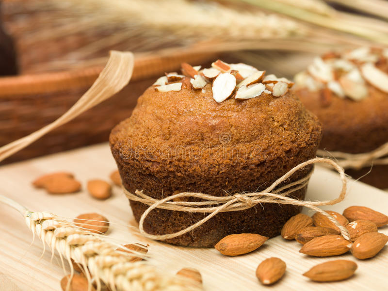 Παραδοσιακά muffins αμυγδάλων cupcake στοκ εικόνες με δικαίωμα ελεύθερης χρήσης