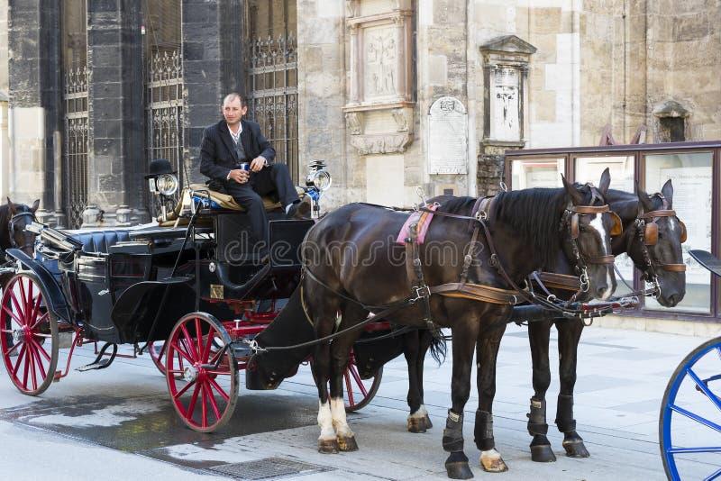 Παραδοσιακές horse-drawn μεταφορές με τα αμάξια για τους τουρίστες για να περπατήσουν κατά μήκος των αρχαίων οδών της Βιέννης στοκ εικόνες με δικαίωμα ελεύθερης χρήσης