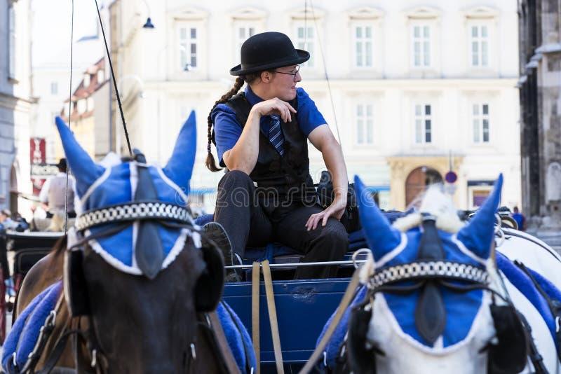 Παραδοσιακές horse-drawn μεταφορές με τα αμάξια για τους τουρίστες για να περπατήσουν κατά μήκος των αρχαίων οδών της Βιέννης στοκ εικόνες
