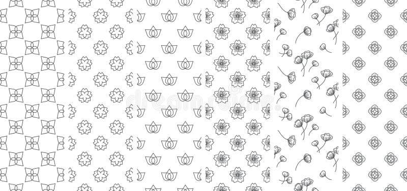 6 παραδοσιακή άνευ ραφής ταπετσαρία γραμμών λουλουδιών και φύλλων Ασία Ιαπωνικά Ταϊλανδικά Κινεζικά διανυσματική απεικόνιση