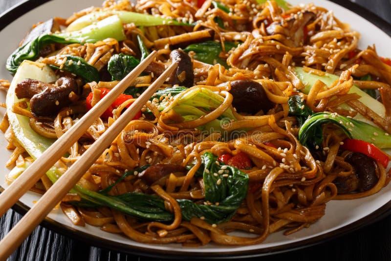 Παραδοσιακός ανακατώστε τα τηγανητά των νουντλς udon με το bok choy, shiitake τα μανιτάρια, την κινηματογράφηση σε πρώτο πλάνο σο στοκ εικόνα με δικαίωμα ελεύθερης χρήσης