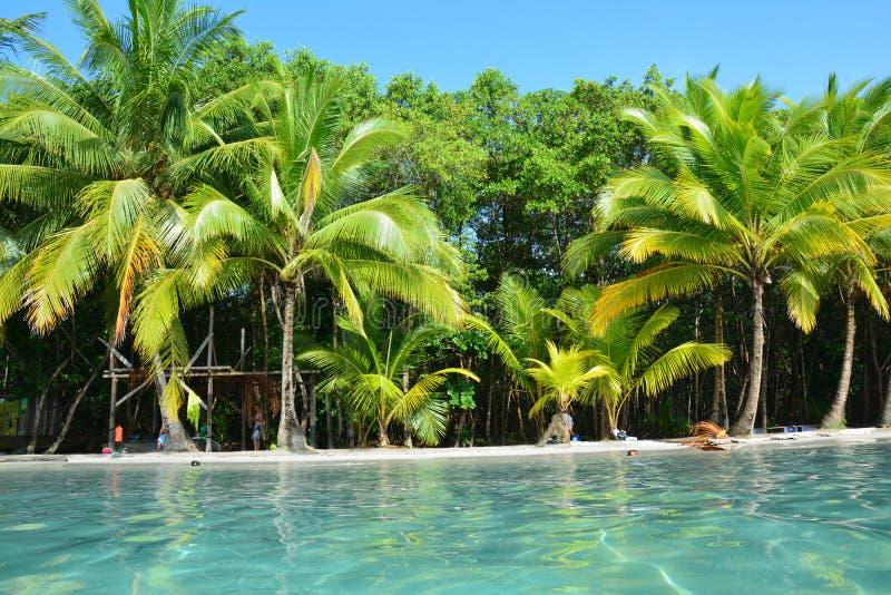 Παραλία αστεριών στο νησί Bocas del Toro Παναμάς άνω και κάτω τελειών στοκ φωτογραφίες με δικαίωμα ελεύθερης χρήσης