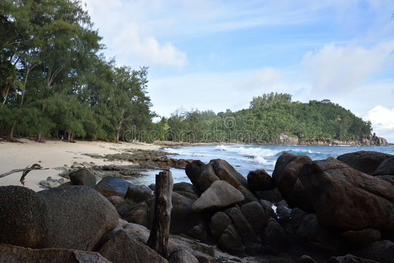 Παραλία - ηλιόλουστες Σεϋχέλλες στοκ εικόνες