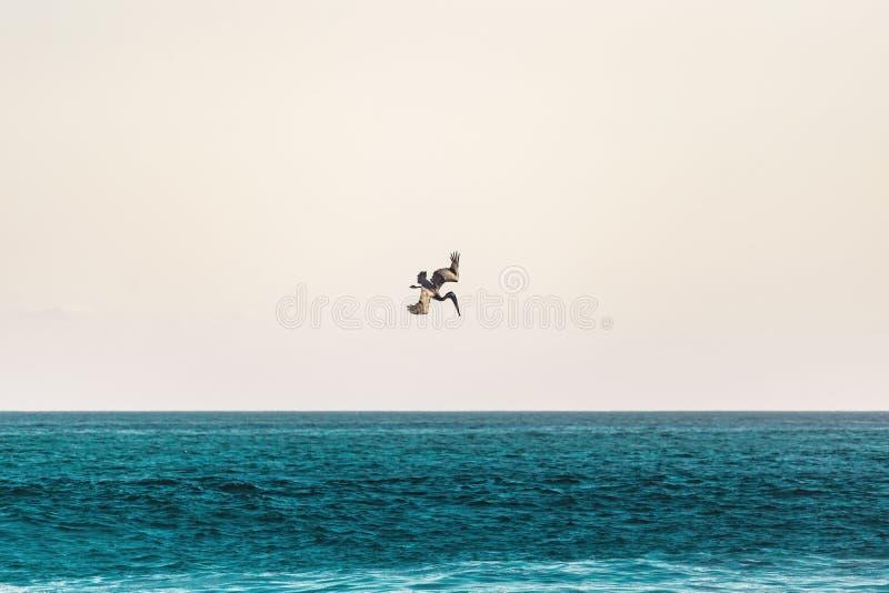 παραλία ι αγάπη στοκ εικόνα με δικαίωμα ελεύθερης χρήσης