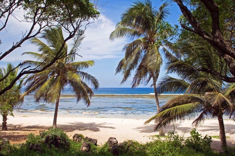παραλία Κένυα στοκ φωτογραφία με δικαίωμα ελεύθερης χρήσης