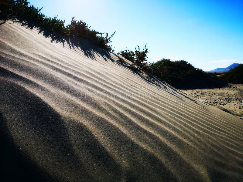 Παραλία καναρινιών στοκ φωτογραφία