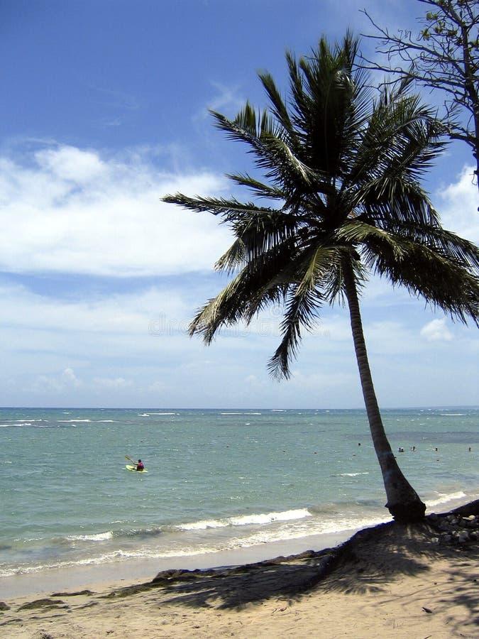 παραλία Καραϊβικές Θάλασ&sig στοκ φωτογραφίες με δικαίωμα ελεύθερης χρήσης