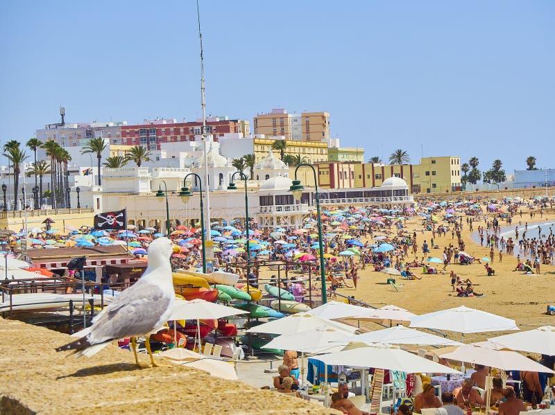 Παραλία Λα Caleta Άποψη από Duque de Najera Avenue Καντίζ Ανδαλουσία, Ισπανία στοκ εικόνα