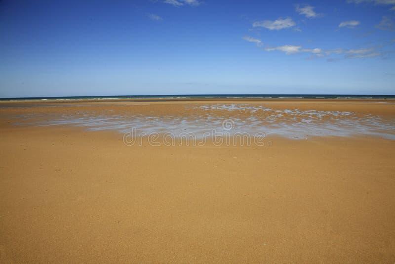παραλία μέρα-μ Ομάχα wwii στοκ εικόνα με δικαίωμα ελεύθερης χρήσης