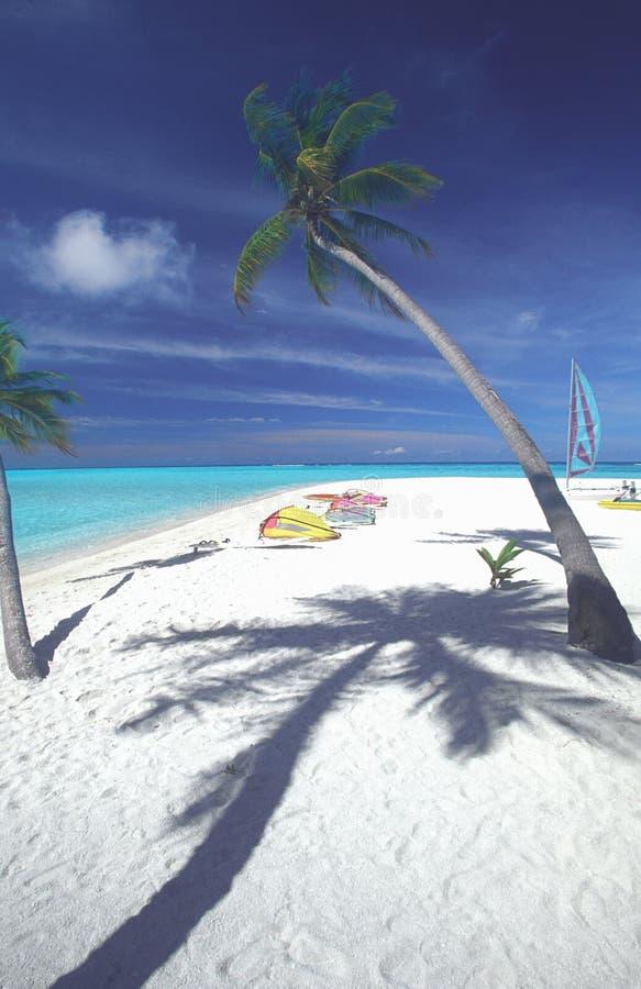 παραλία Μαλβίδες τροπικέ&s στοκ φωτογραφίες με δικαίωμα ελεύθερης χρήσης