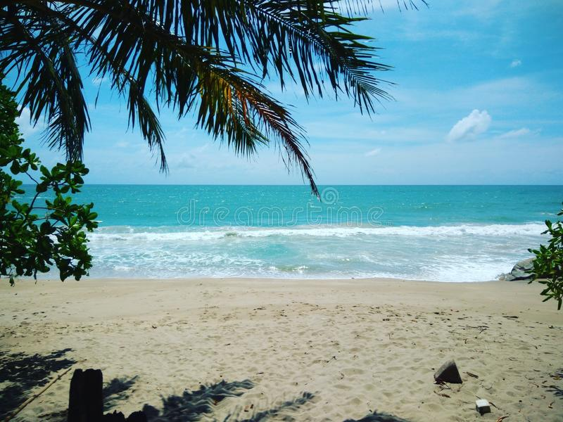 Παραλία μπανανών στοκ εικόνες
