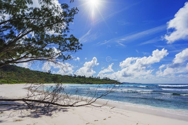 Παραλία παραδείσου στις Σεϋχέλλες, anse cocos, Λα digue 2 στοκ εικόνα με δικαίωμα ελεύθερης χρήσης