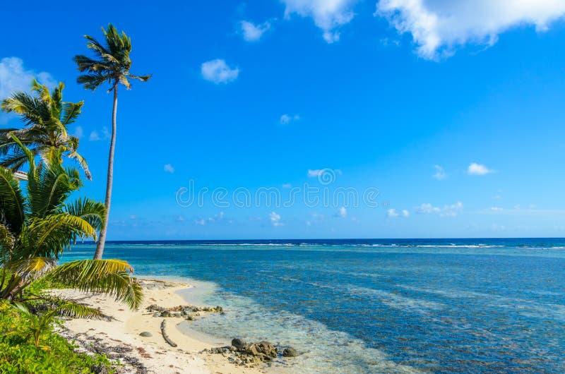 Παραλία παραδείσου στο σταθμό τομέων κοραλλιογενών νήσων τόξων της Carrie νησιών caye, καραϊβική θάλασσα, Μπελίζ Τροπικός προορισ στοκ εικόνα