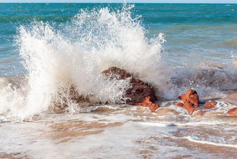 Παραλία σε Nordeste Βραζιλία στοκ εικόνες με δικαίωμα ελεύθερης χρήσης
