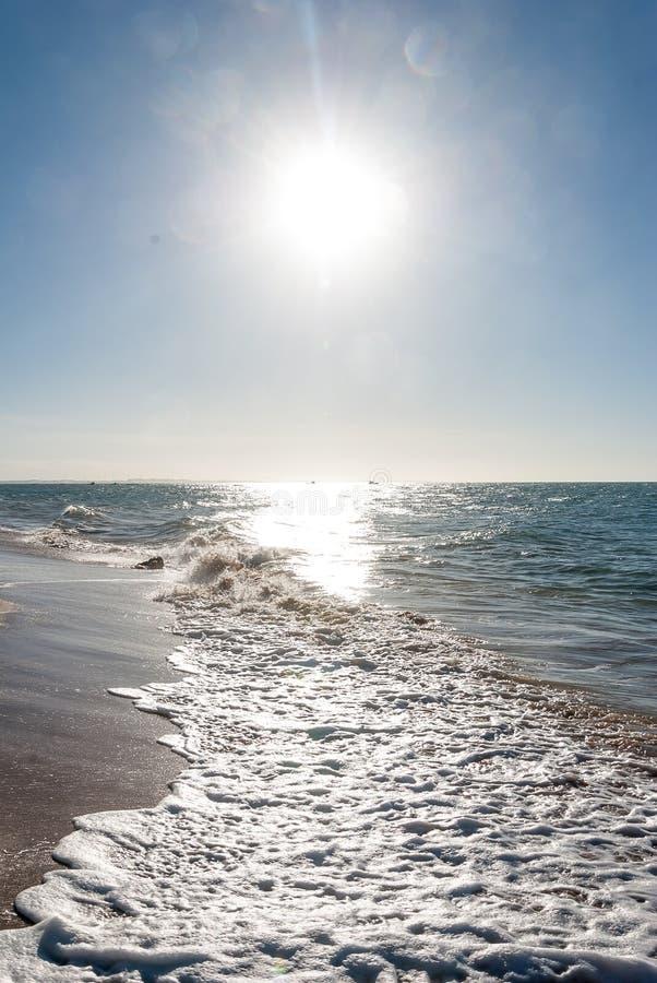 Παραλία σε Nordeste Βραζιλία στοκ εικόνα με δικαίωμα ελεύθερης χρήσης