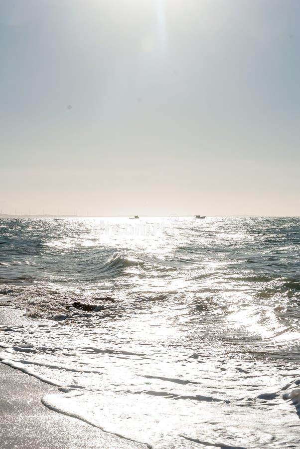 Παραλία σε Nordeste Βραζιλία στοκ φωτογραφία με δικαίωμα ελεύθερης χρήσης