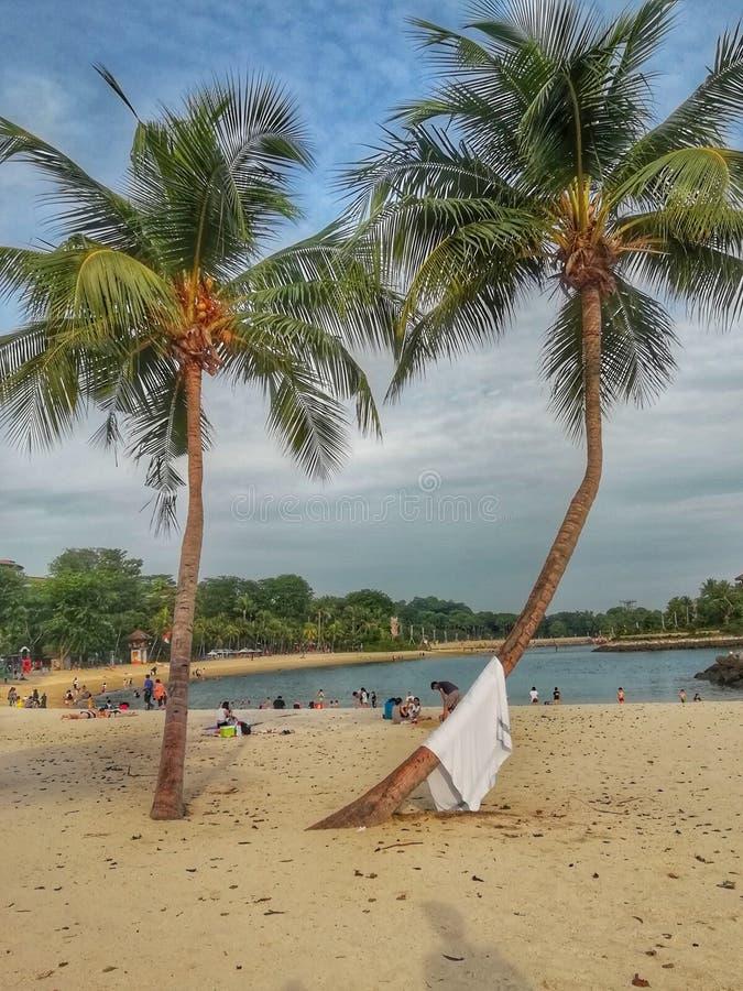 Παραλία Σινγκαπούρη Siloso στοκ εικόνα
