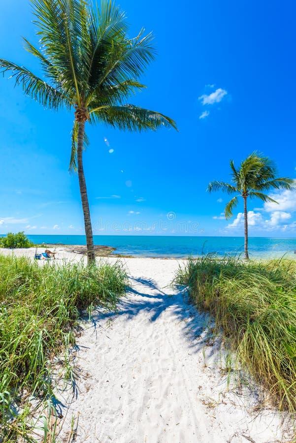 Παραλία σομπρέρο με τους φοίνικες στους Florida Keys, μαραθώνιος, Φλώριδα, ΗΠΑ Τροπικός και προορισμός παραδείσου για τις διακοπέ στοκ φωτογραφίες με δικαίωμα ελεύθερης χρήσης