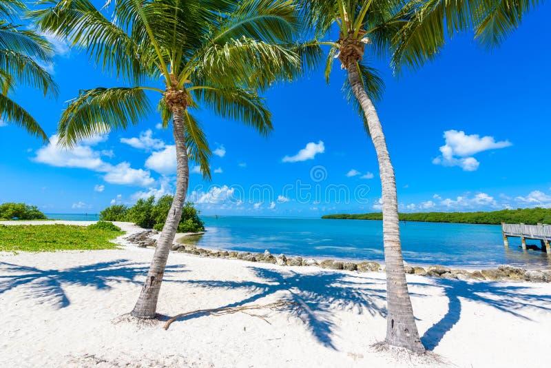 Παραλία σομπρέρο με τους φοίνικες στους Florida Keys, μαραθώνιος, Φλώριδα, ΗΠΑ Τροπικός και προορισμός παραδείσου για τις διακοπέ στοκ εικόνα