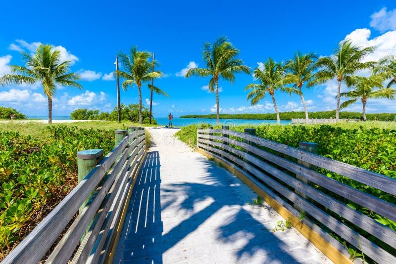 Παραλία σομπρέρο με τους φοίνικες στους Florida Keys, μαραθώνιος, Φλώριδα, ΗΠΑ Τροπικός και προορισμός παραδείσου για τις διακοπέ στοκ εικόνα με δικαίωμα ελεύθερης χρήσης