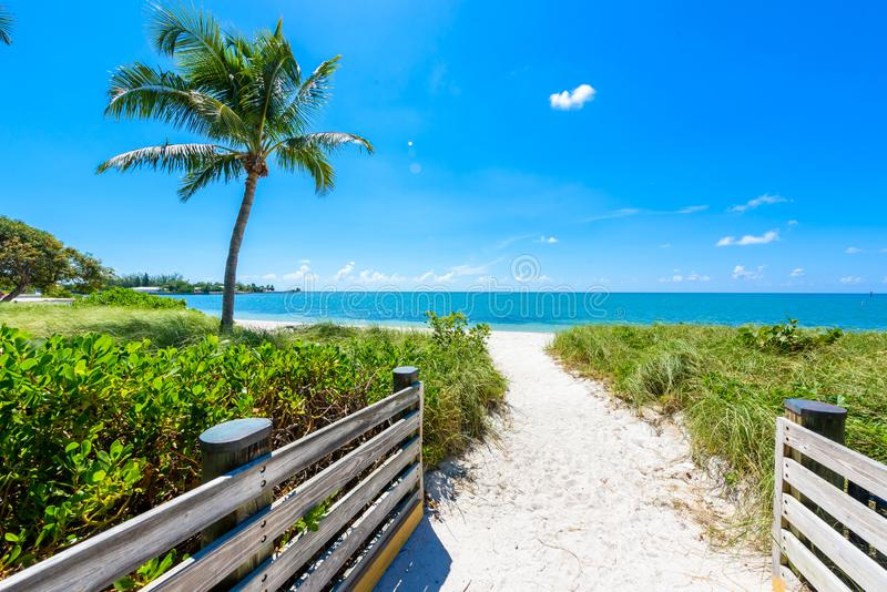 Παραλία σομπρέρο με τους φοίνικες στους Florida Keys, μαραθώνιος, Φλώριδα, ΗΠΑ Τροπικός και προορισμός παραδείσου για τις διακοπέ στοκ φωτογραφία με δικαίωμα ελεύθερης χρήσης