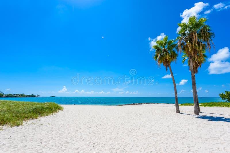 Παραλία σομπρέρο με τους φοίνικες στους Florida Keys, μαραθώνιος, Φλώριδα, ΗΠΑ Τροπικός και προορισμός παραδείσου για τις διακοπέ στοκ εικόνες
