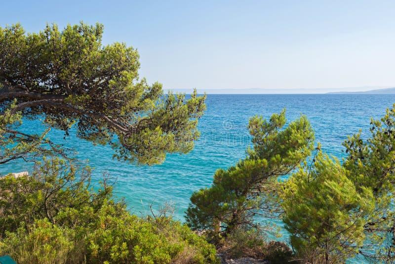 Παραλία στην κροατική ακτή, μπλε θάλασσα στοκ φωτογραφίες με δικαίωμα ελεύθερης χρήσης