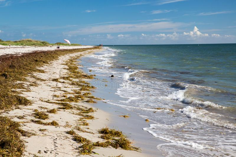 Παραλία στο κρατικό πάρκο της Φλώριδας ακρωτηρίων του Μπιλ Baggs στοκ εικόνες