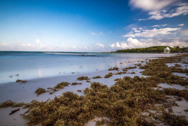 Παραλία στο riviera maya κοντά σε Cancun και Tulum στο Μεξικό σε έναν ηλιόλουστο στοκ φωτογραφίες με δικαίωμα ελεύθερης χρήσης