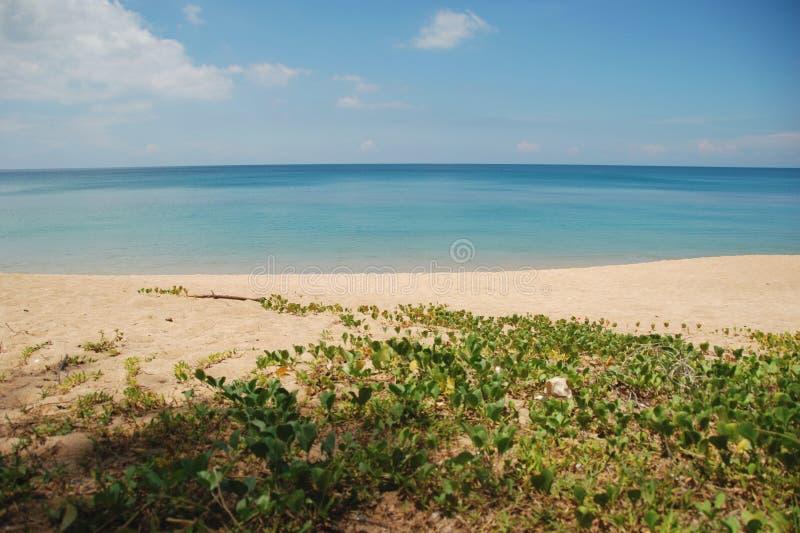 Παραλία της Mai Khao του NP Sirinat στοκ εικόνες