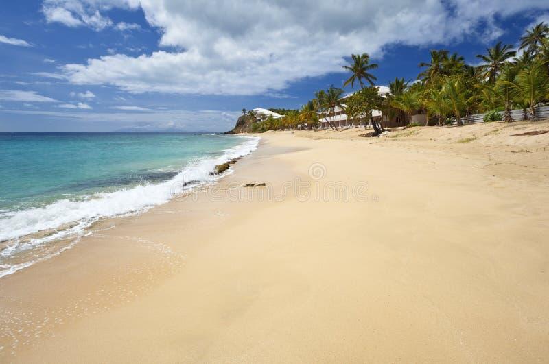 Παραλία του Bluff κουρτινών, Αντίγκουα στοκ εικόνες με δικαίωμα ελεύθερης χρήσης