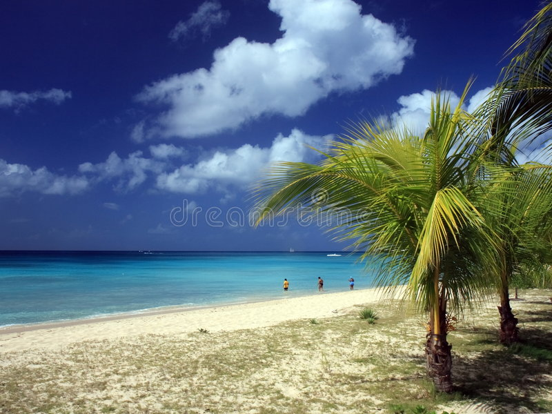 παραλία των Μπαρμπάντος στοκ φωτογραφία