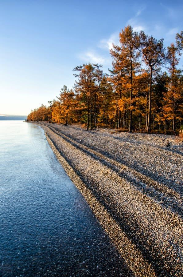 Παραλία χαλικιών στη λίμνη Baikal Πολύ ήρεμο, σαφές και όμορφο νερό στοκ εικόνα