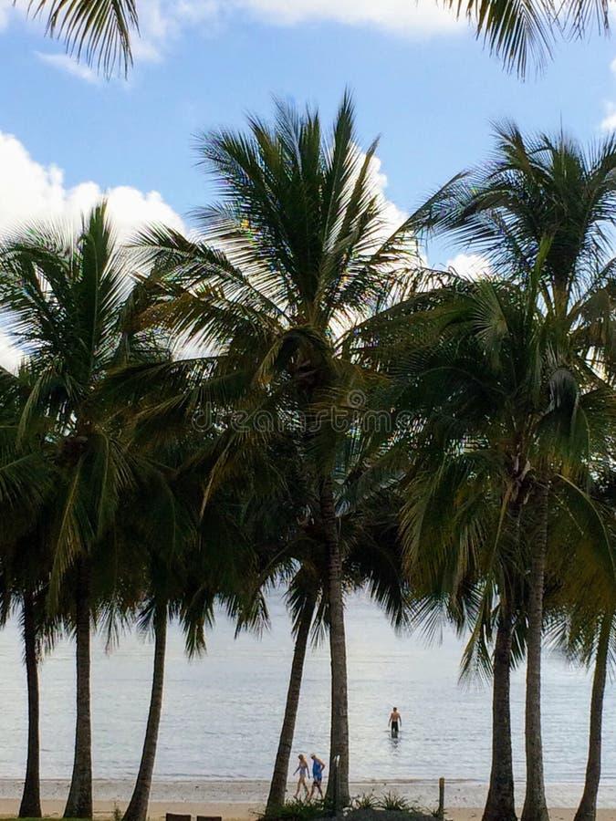 παραλία όμορφη στοκ εικόνα