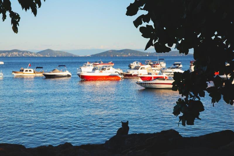 Παραλία Bostanci στην ασιατική πλευρά της Κωνσταντινούπολης και της Marmara θάλασσας στοκ φωτογραφία με δικαίωμα ελεύθερης χρήσης