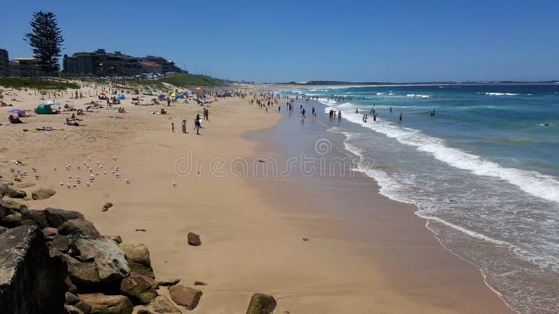 Παραλία Cronulla στο Σίδνεϊ, Αυστραλία στοκ εικόνες