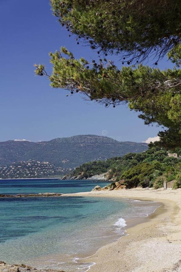 Παραλία Gigaro, γαλλικό Riviera, νότια Γαλλία, Ευρώπη στοκ εικόνες με δικαίωμα ελεύθερης χρήσης