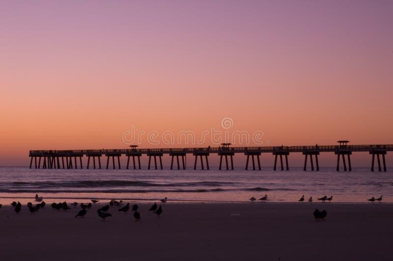 Παραλία Jax στη Dawn στοκ φωτογραφίες με δικαίωμα ελεύθερης χρήσης