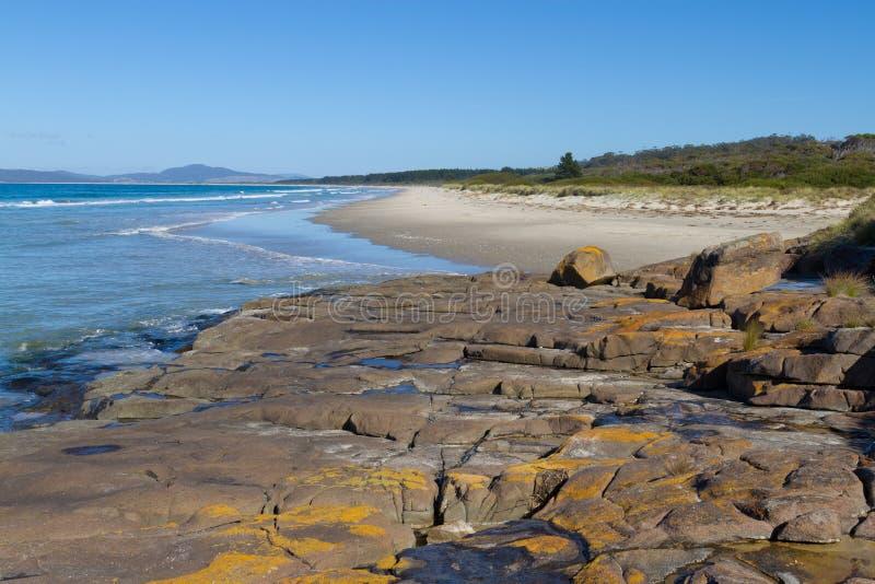 παραλία Marion κόλπων στοκ εικόνες