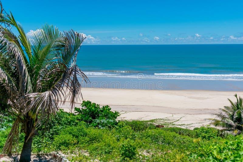 Παραλία Nordeste Βραζιλία στοκ εικόνες
