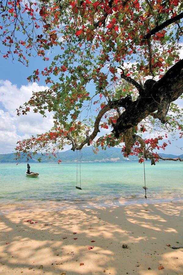 παραλία patong στοκ εικόνες με δικαίωμα ελεύθερης χρήσης