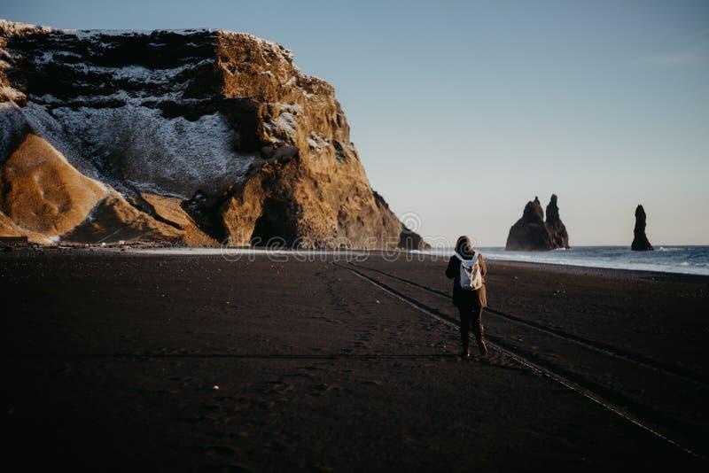 Παραλία Reinsfjara, Ισλανδία στοκ εικόνα με δικαίωμα ελεύθερης χρήσης